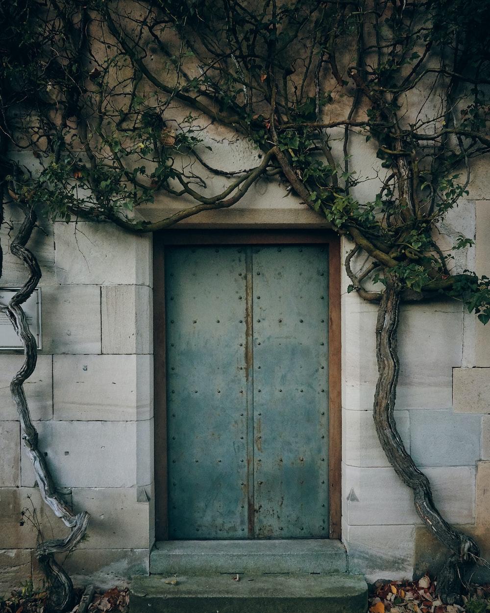 closed gray door