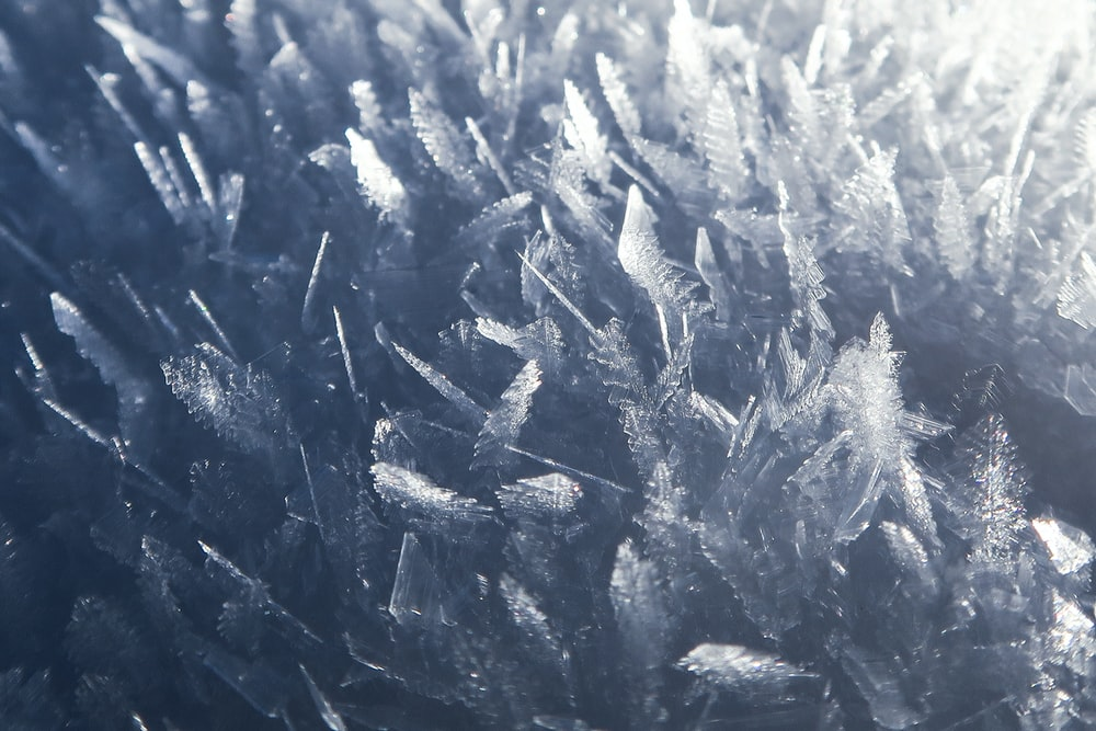 closeup photo of ice formation field