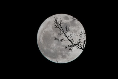 full moon moon zoom background