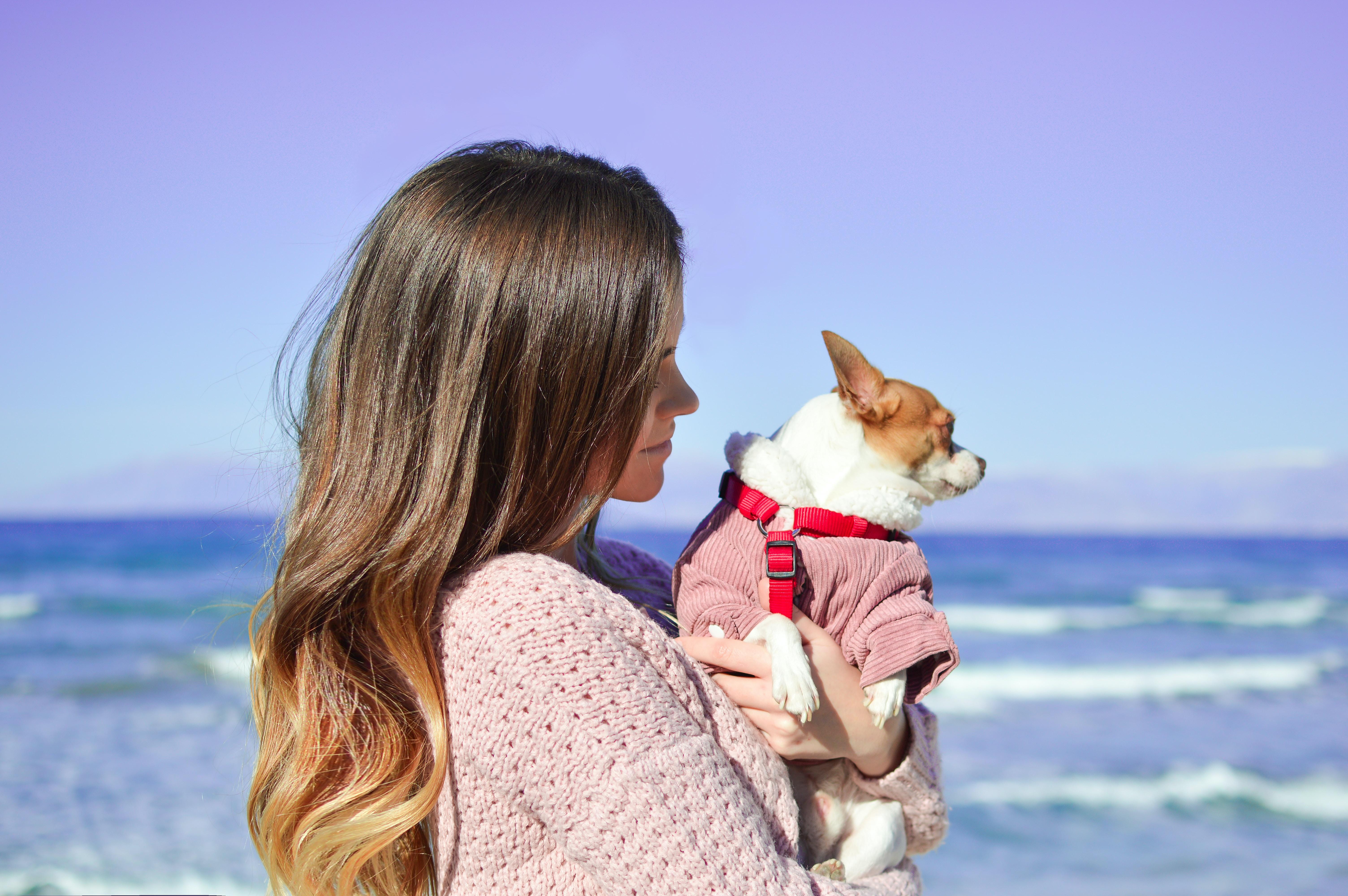 woman holding white dog on seashore