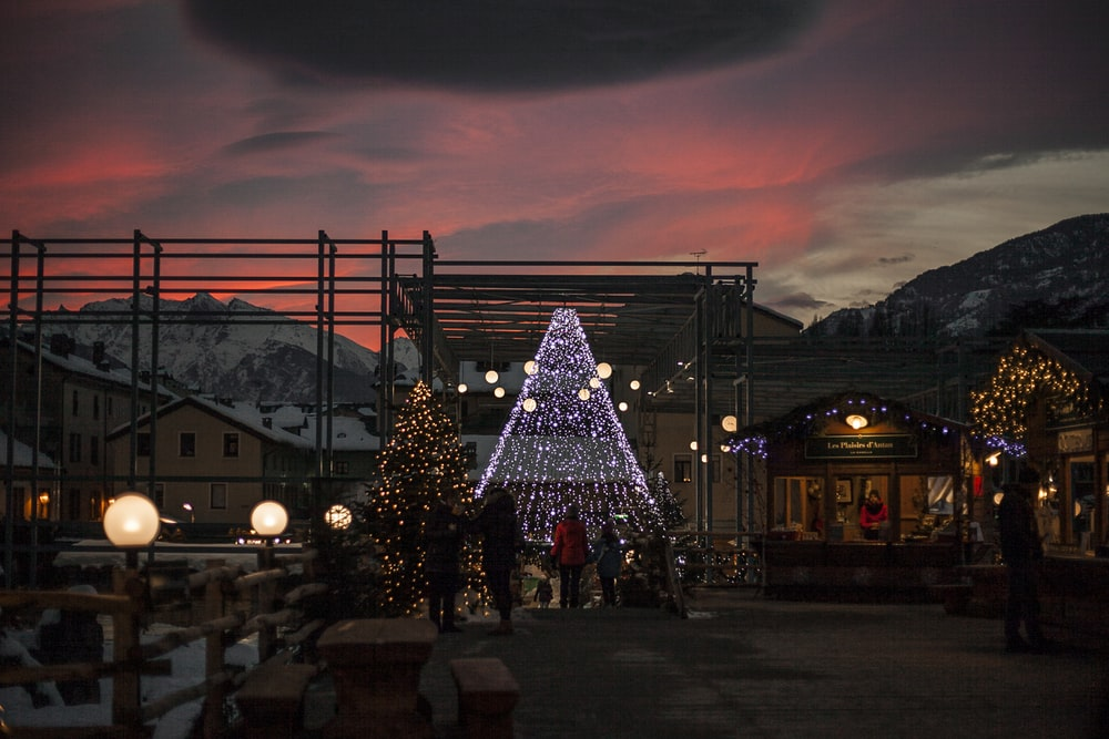 people walking on the street beside Christmas tree