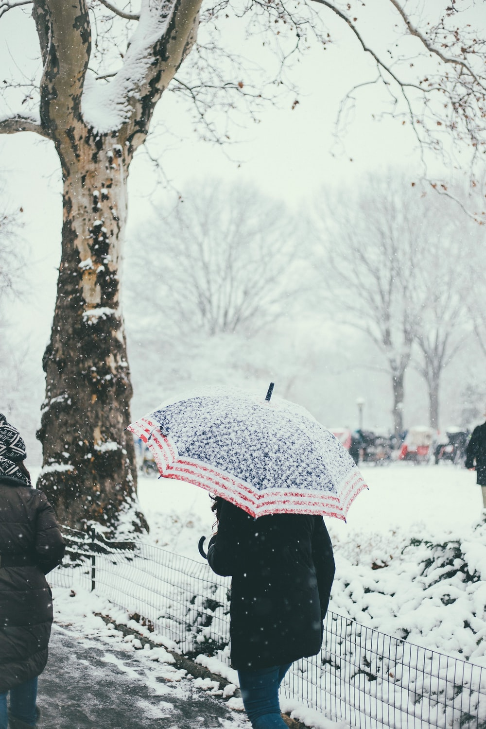 person walking while holding umbrella during snowy weather
