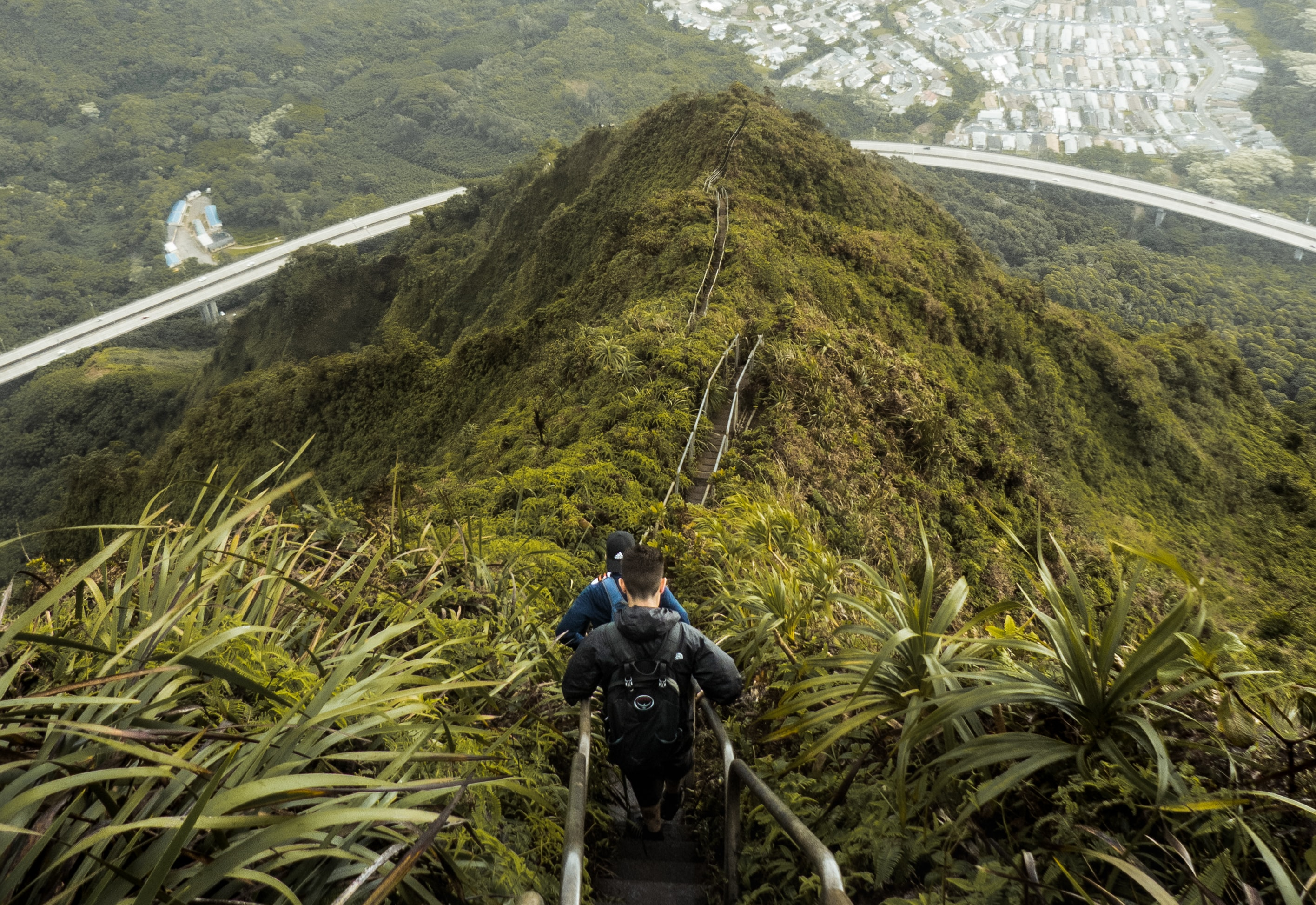 high angle photo of mountain with stairs