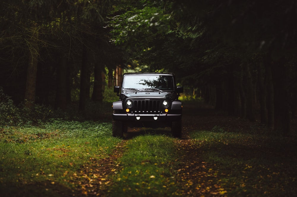 black Jeep Wrangler SUV on green under trees
