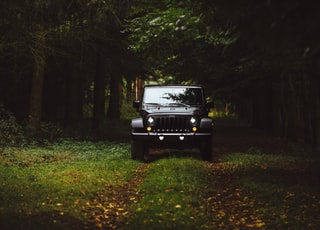 black Jeep Wrangler SUV on green under trees