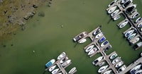 aerial photography of assorted-color boats on body of water