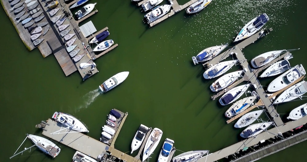 bird's-eye view photography of white-and-blue boats