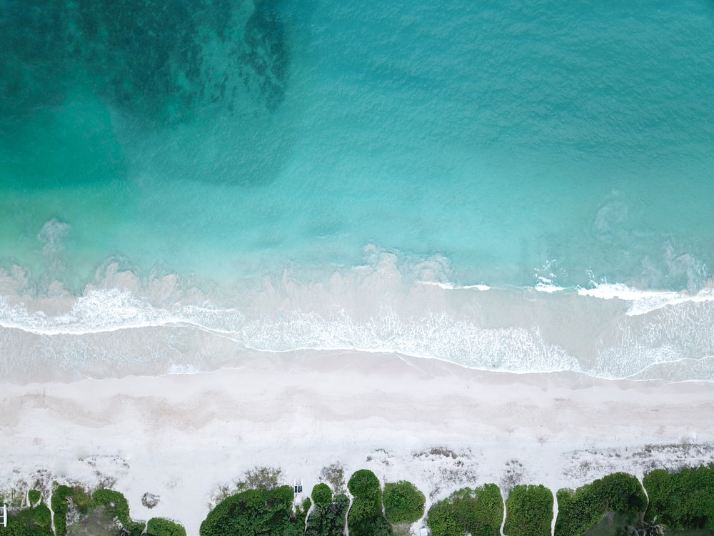 bird's eye view photo of seashore