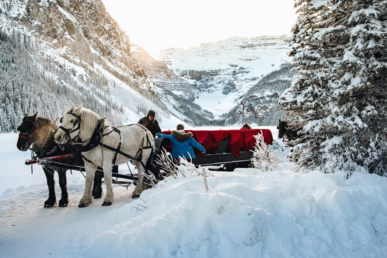 men's standing beside two horses near mountain during daytime