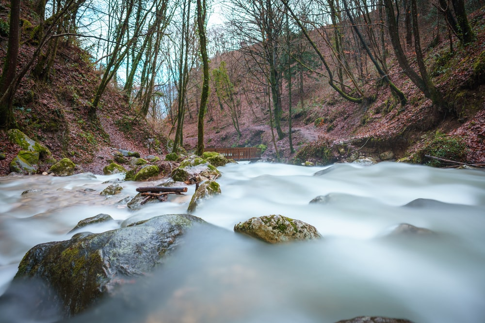 time-lapsed photography of body of water between trees on brown mountain