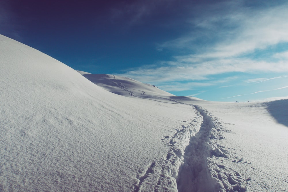 landscape photography of snow field