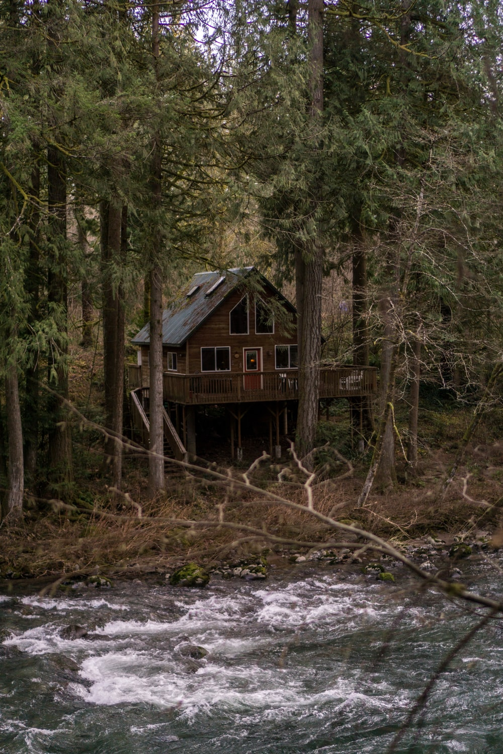 Best 100 Cabin In Woods Pictures Download Free Images On Unsplash