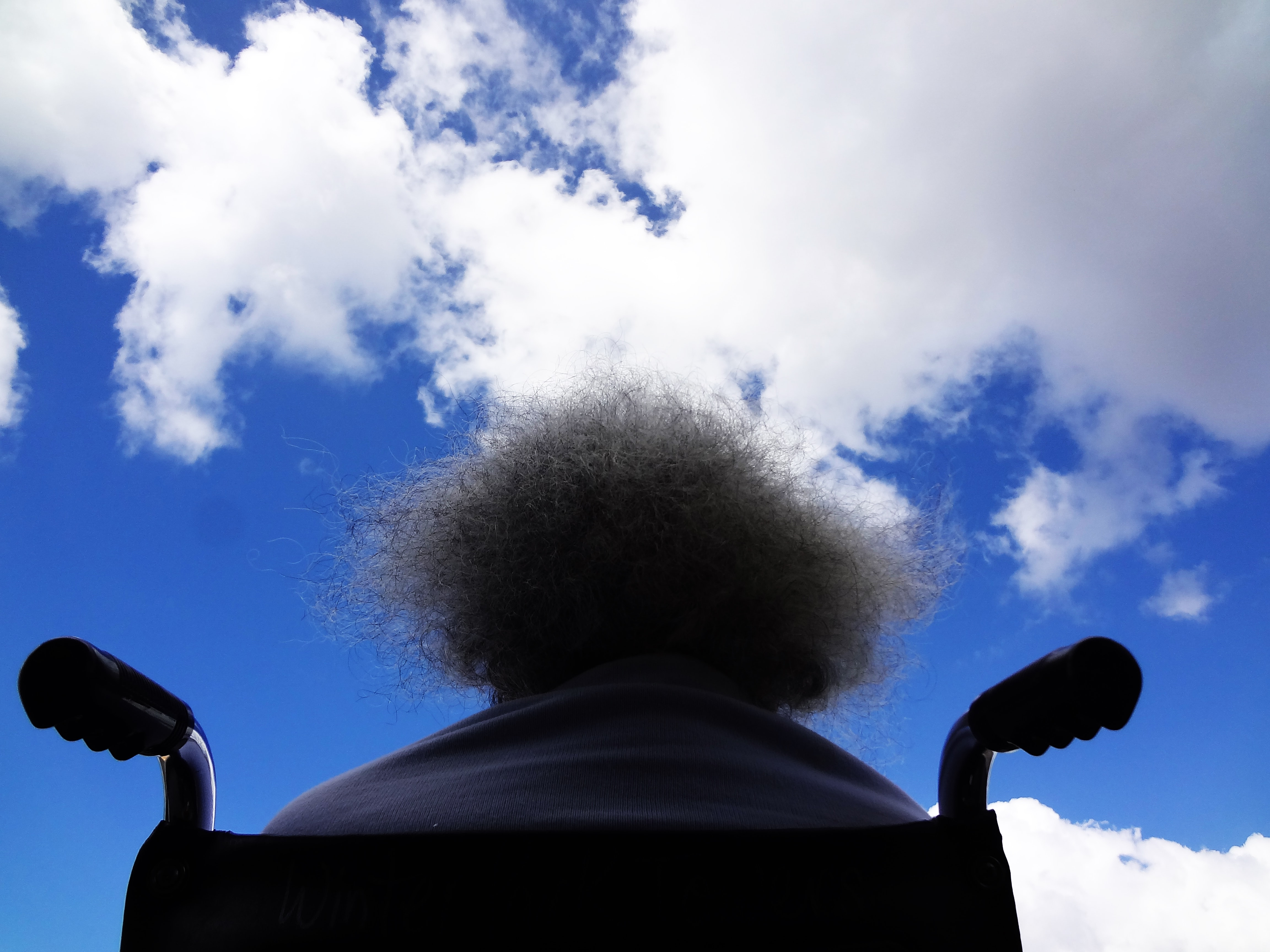 person sitting on black wheelchair staring in the sky