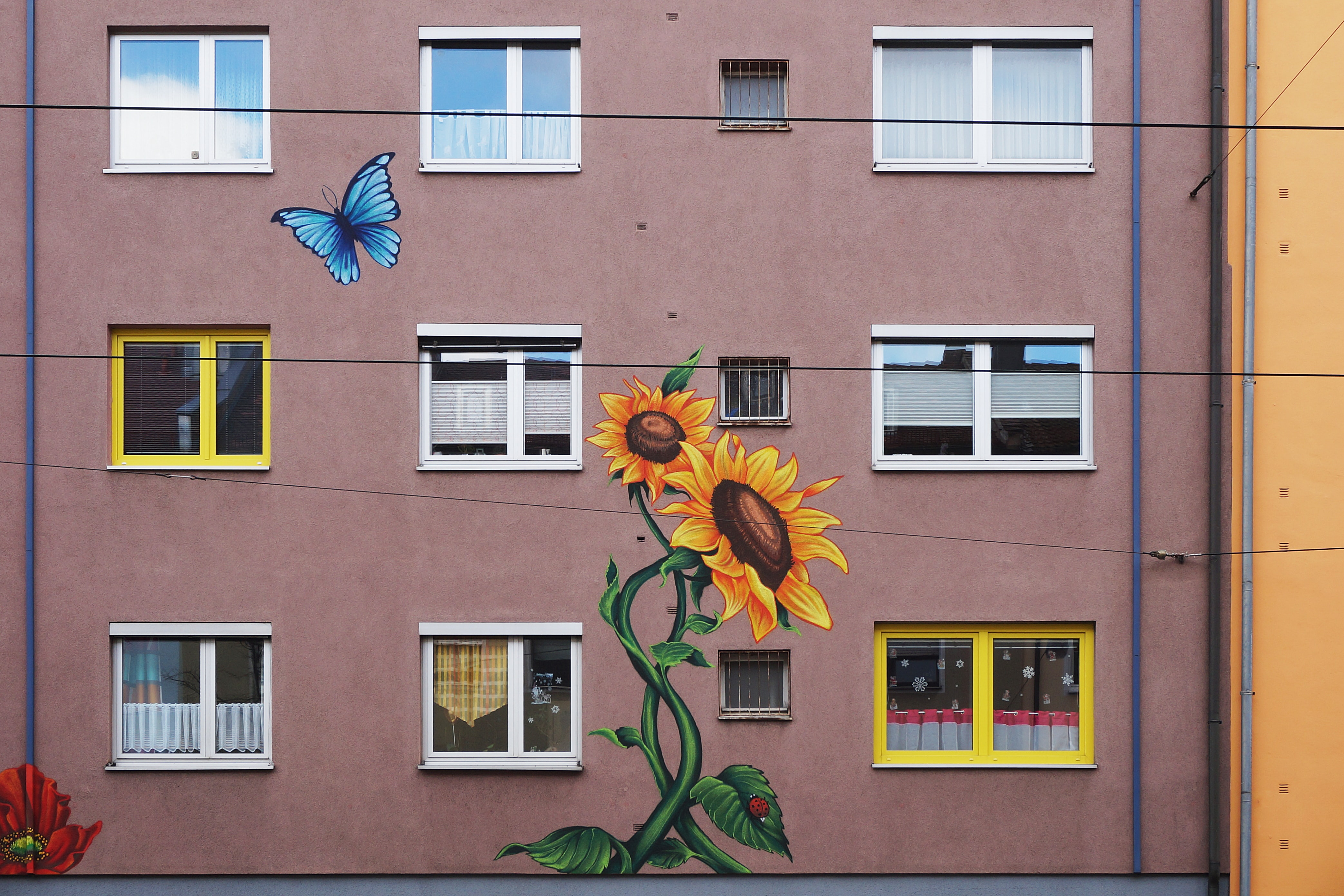 oran ge sunflower paint on building