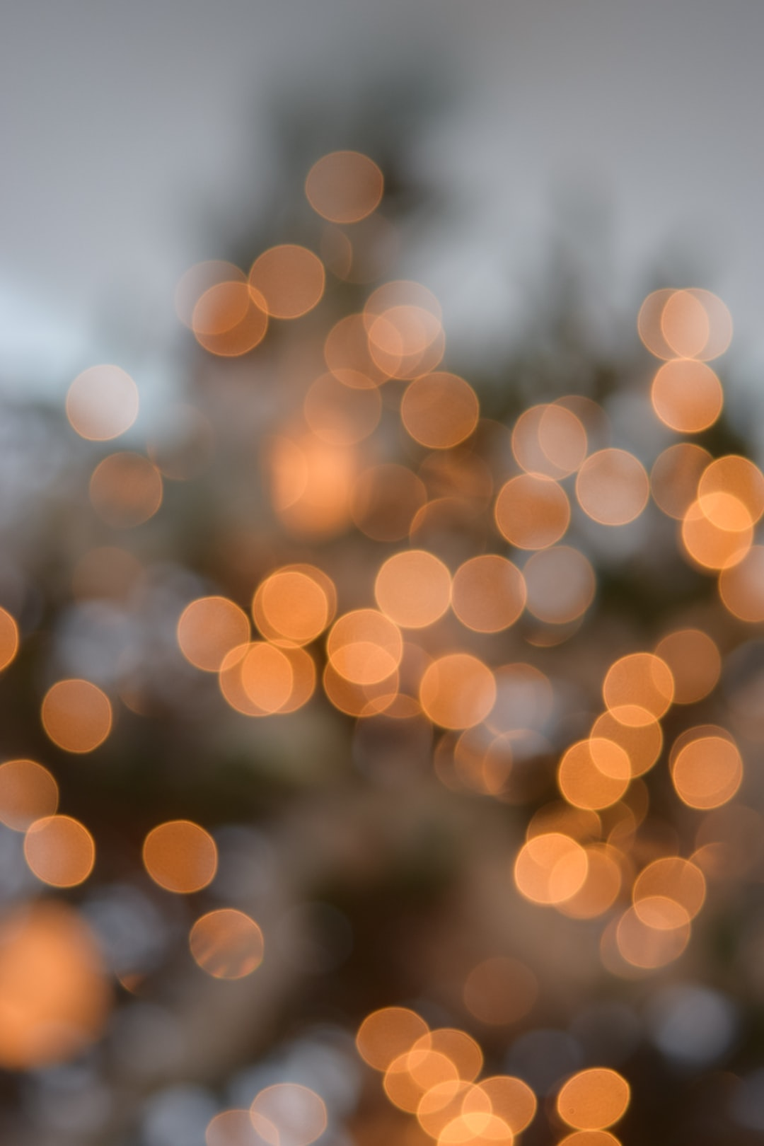 500+ Stunning Bokeh Pictures [HD]