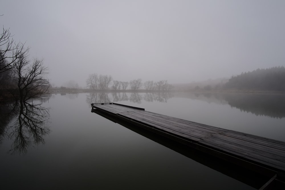 brown bridge over body of water with fogs