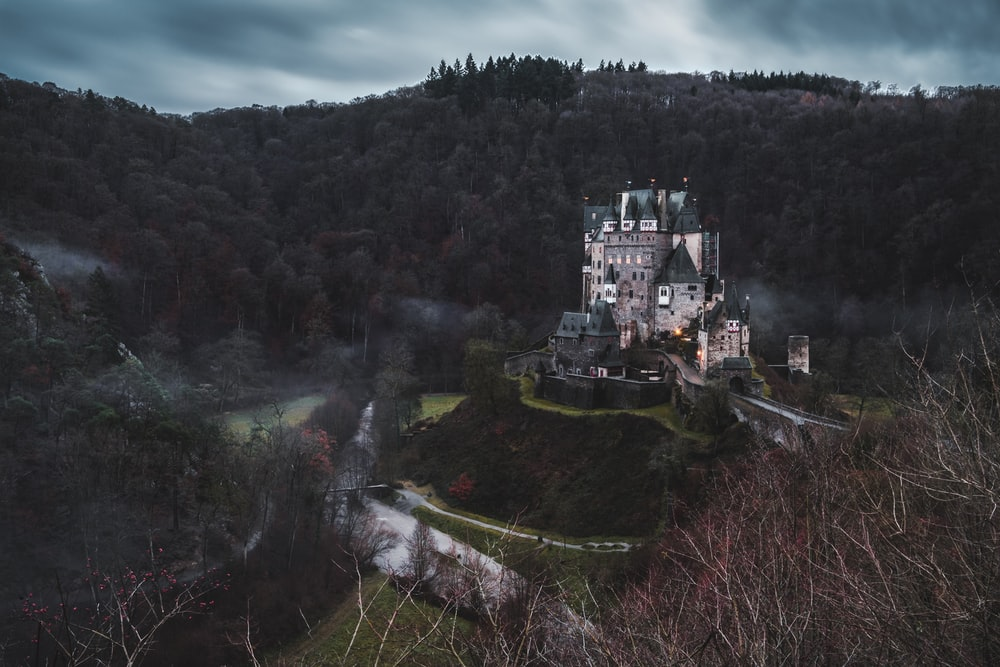 gray concrete castle surrounded by trees under gray skies
