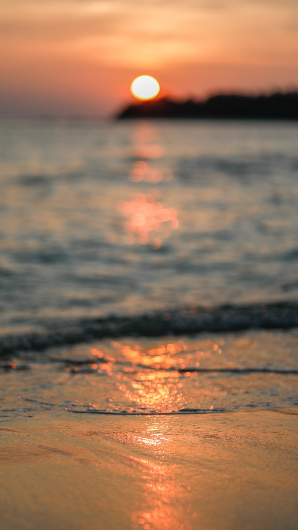 selective focus photography of shoreline during golden hour