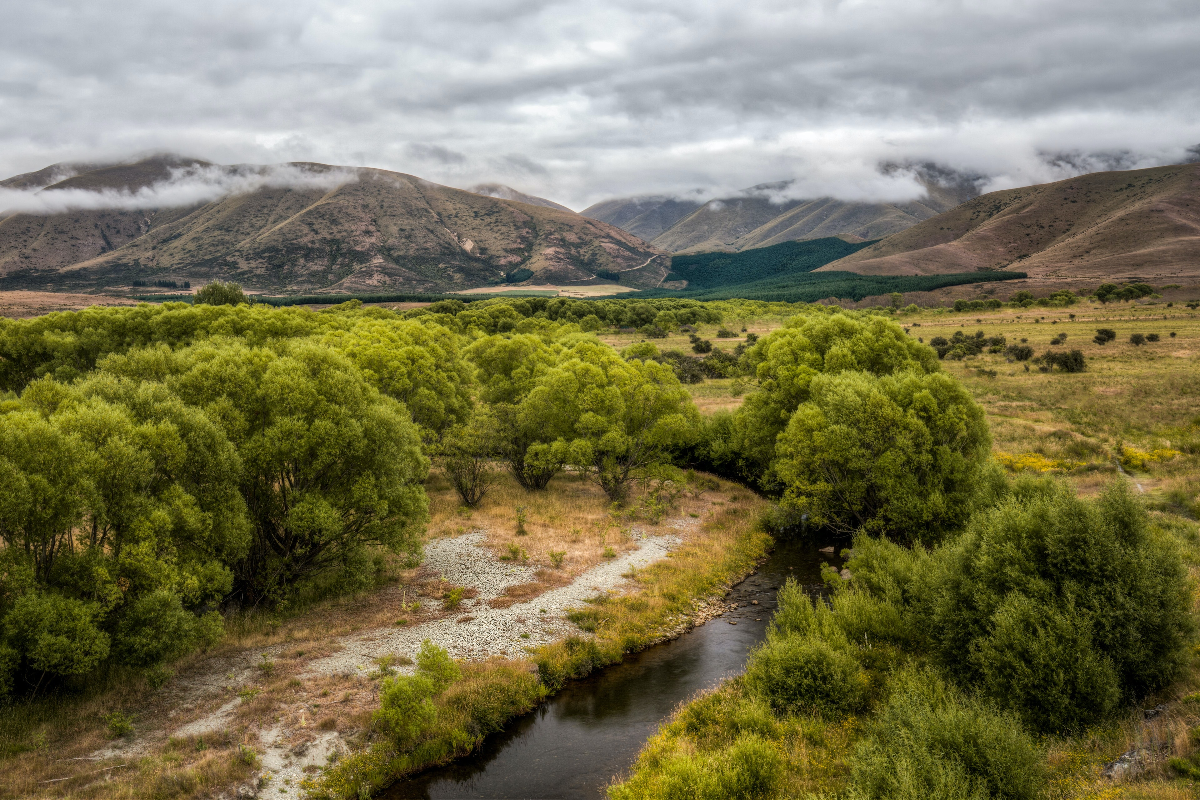 aerial photography of river and trees