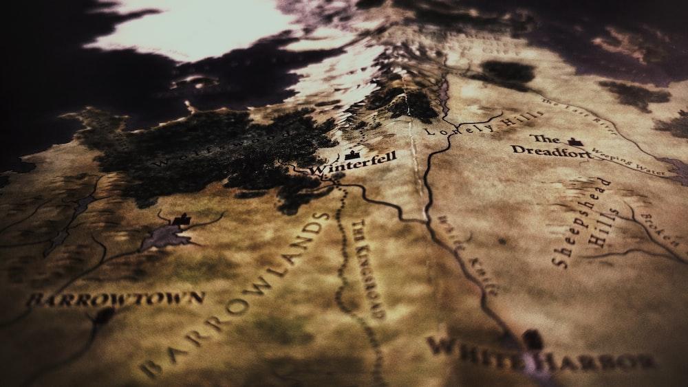 closeup photo of brown map