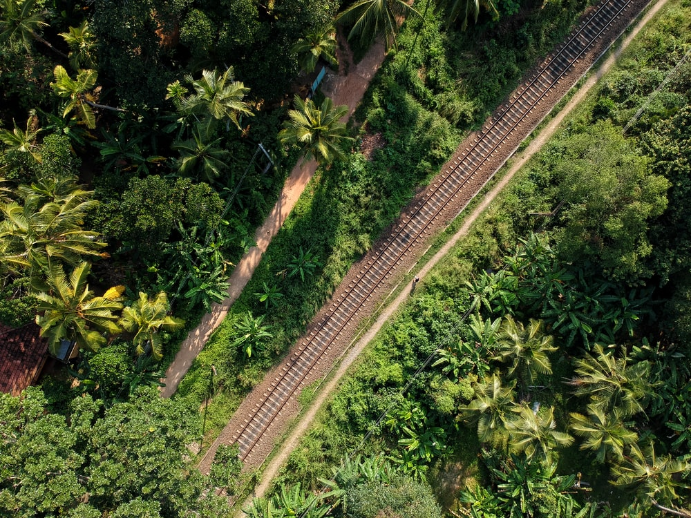 aerial photograph of train rails between trees