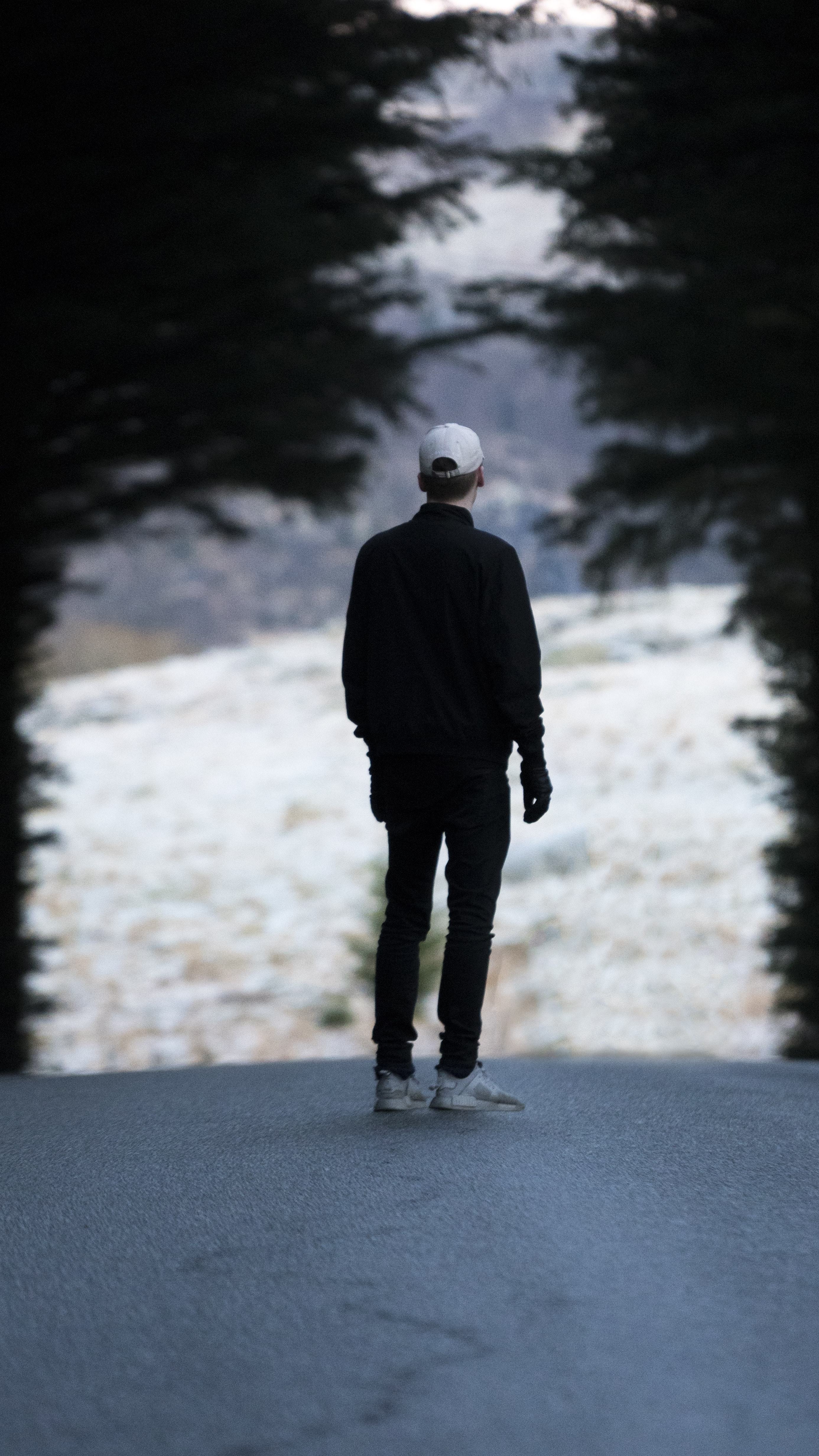 man standing on pathway with trees