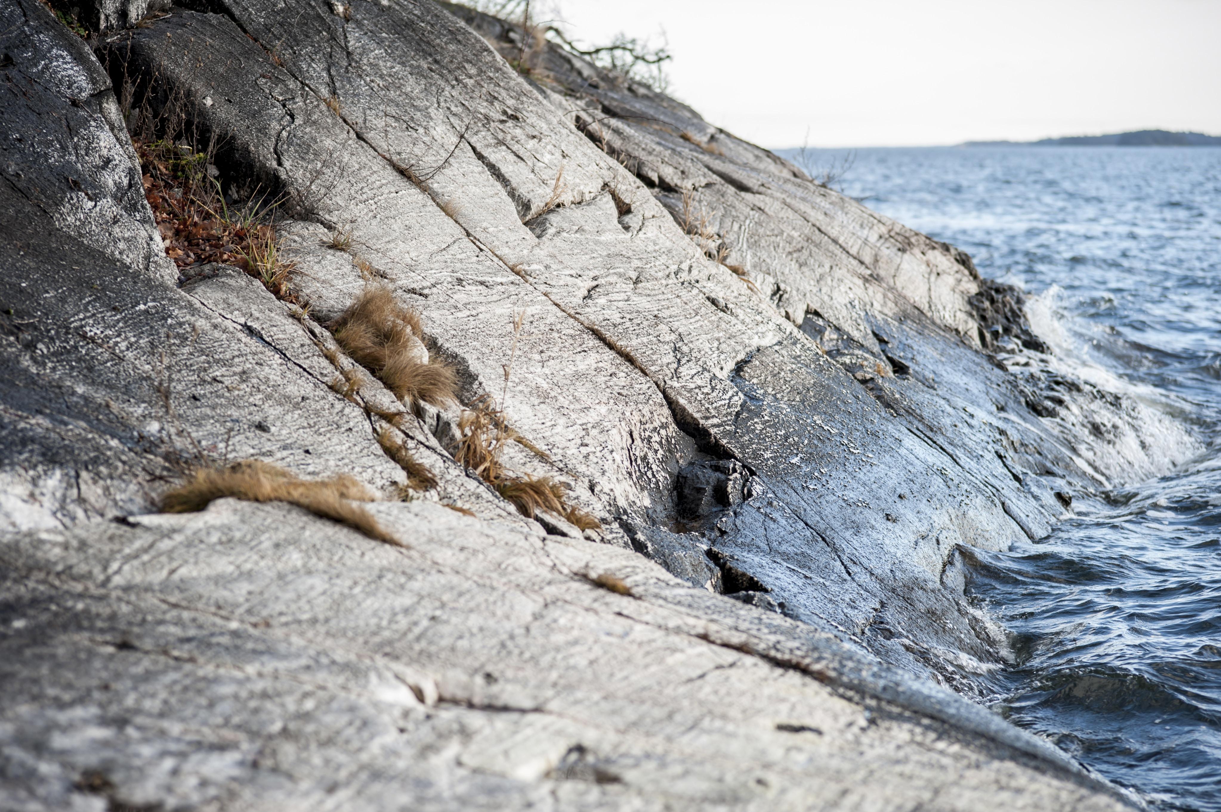 seashore near rocky mountain