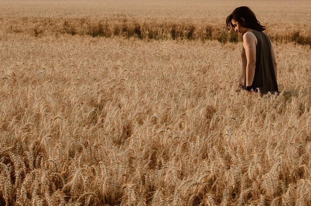man standing on rice fields