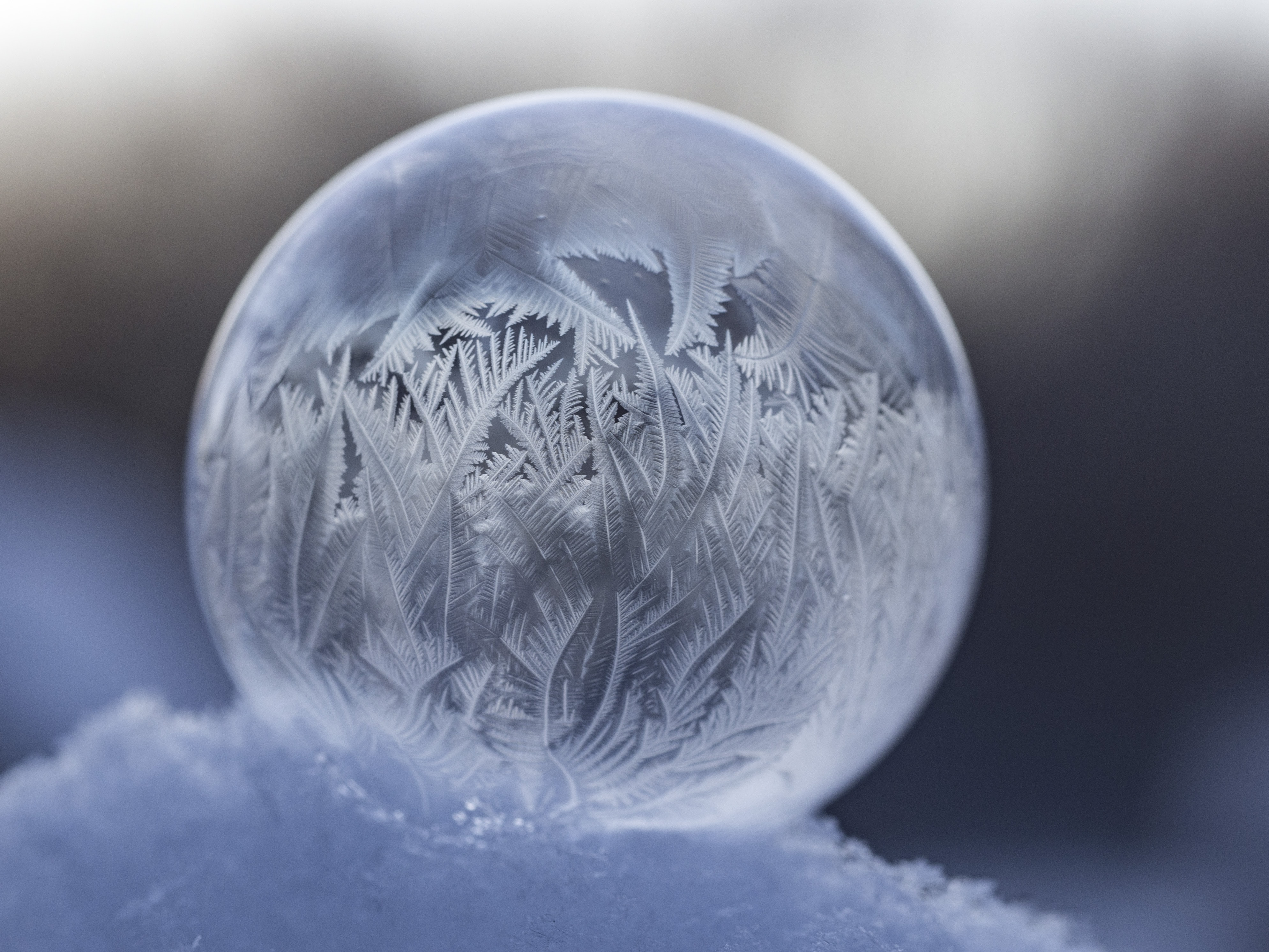 shallow focus photography of clear water globe