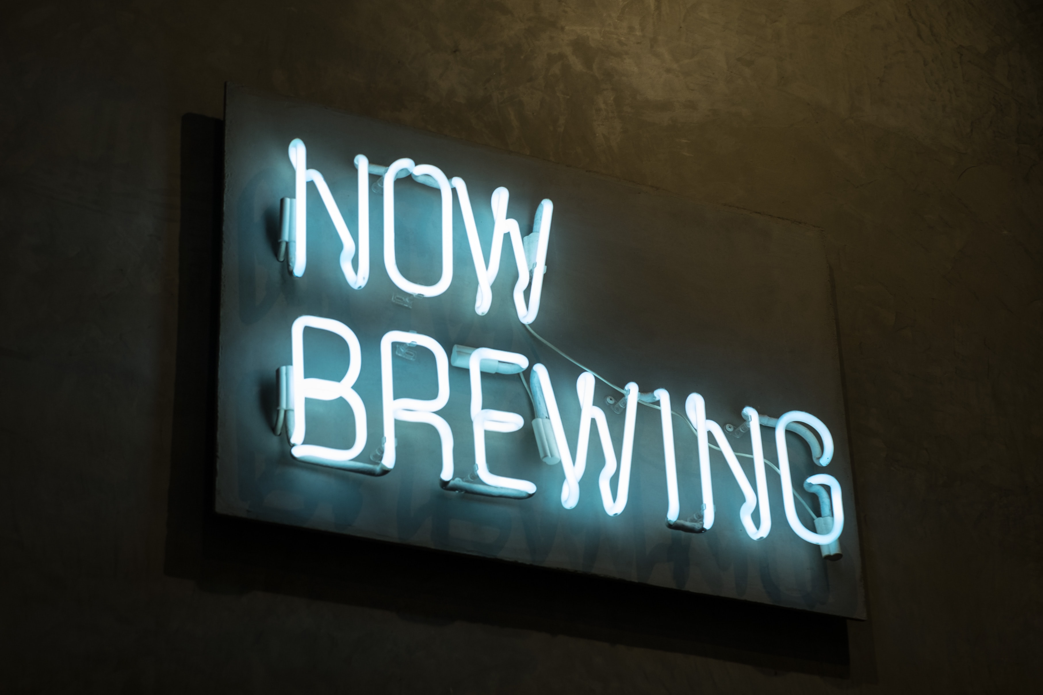 lighted Now Brewing neon light signage