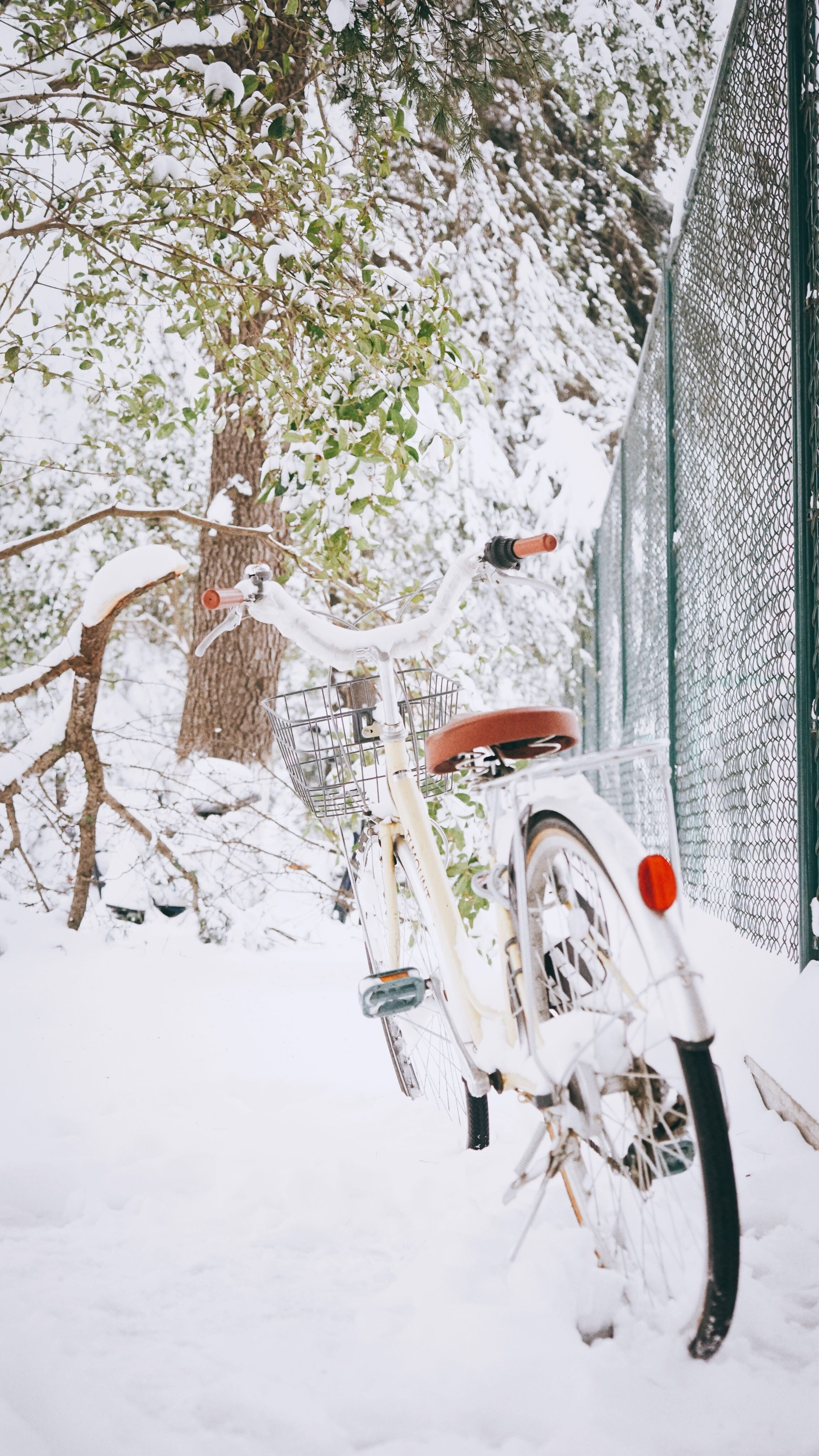 white and gray bicycle near green cyclone fence