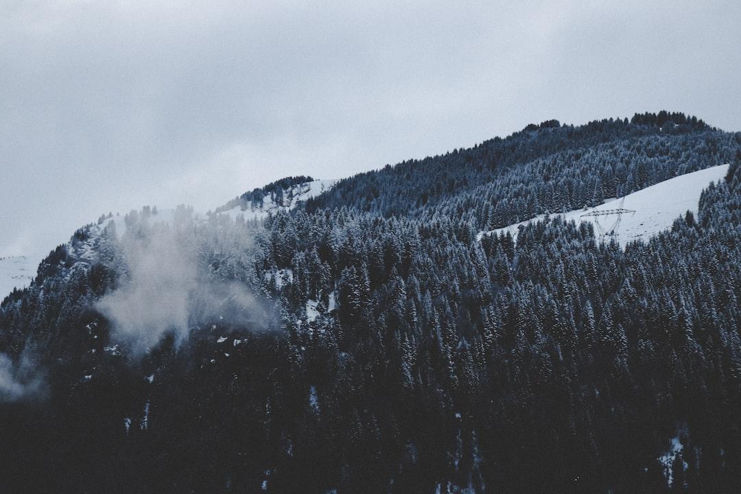 Winter heights
