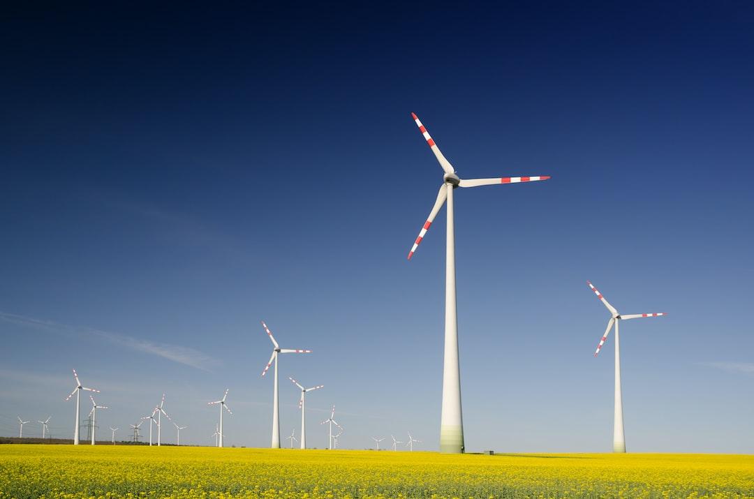 """""""Wind turbines in the rape seed field"""""""