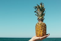 shallow focus photography of pineapple