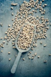 white beans on gray scraper