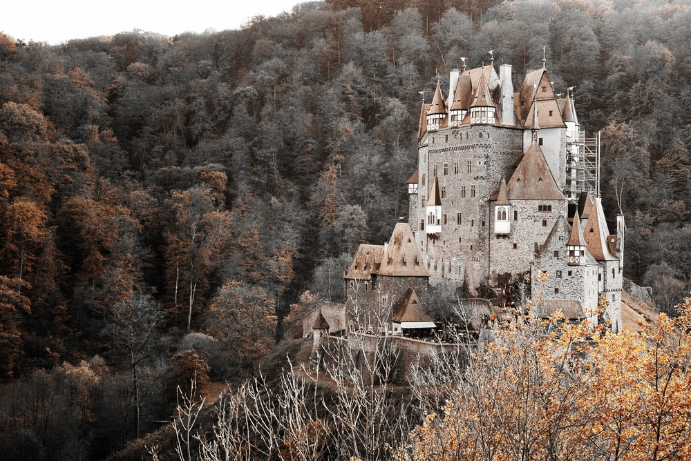 castle surrounded by trees on mountain