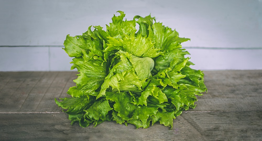 closeup photo of lettuce on gray surface