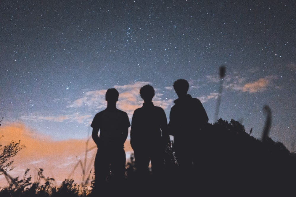silhouette of three people standing on tall grass during nighttime