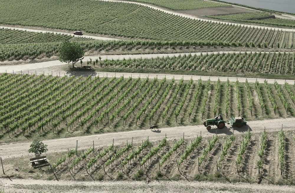 aerial view photography of farm during daytime