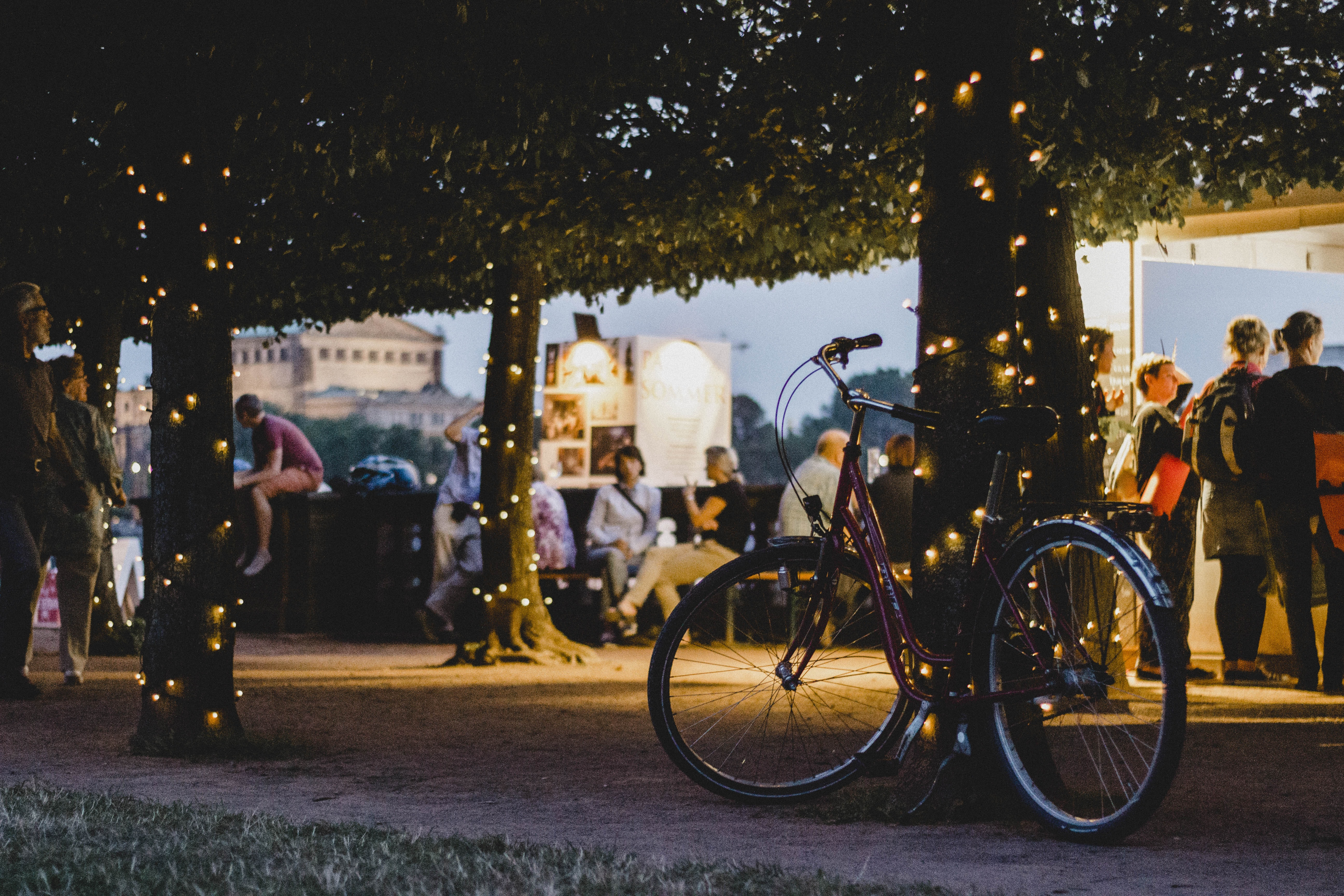 shallow focus photography of bike parked beside tree