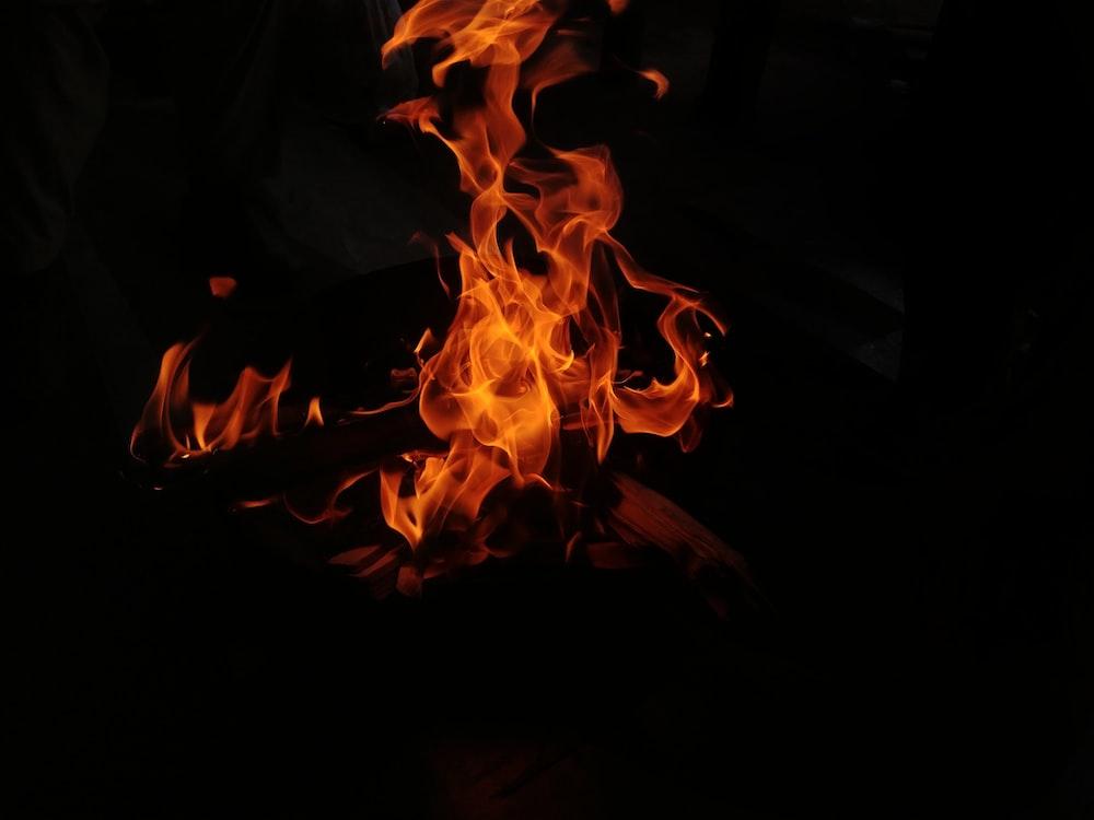 shallow photography of wood burning