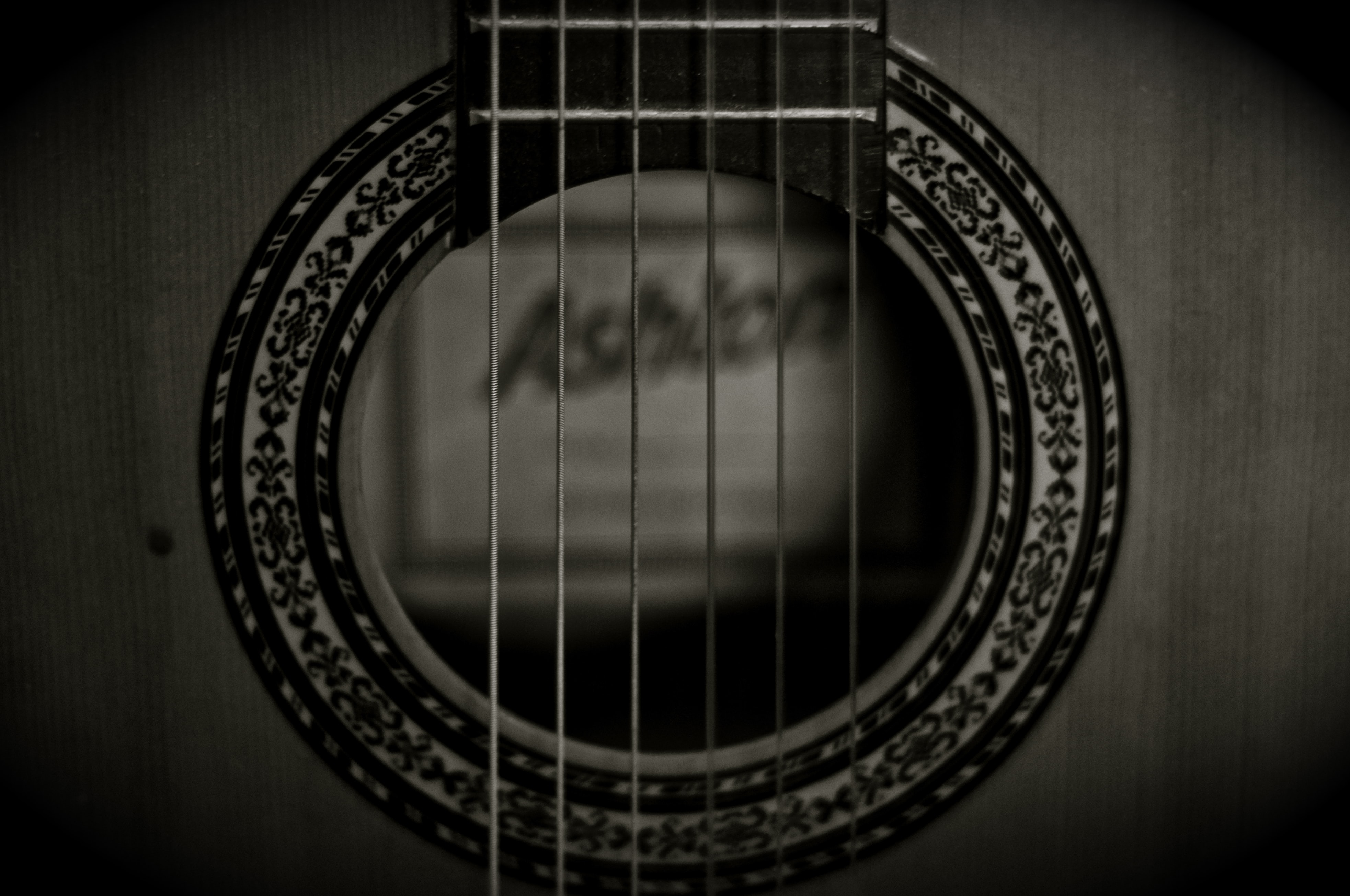 photo of grayscale guitar strings