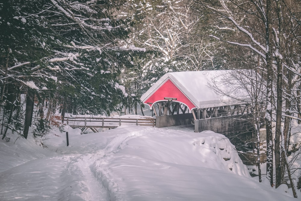 gray and red gazebo covered with snow near trees
