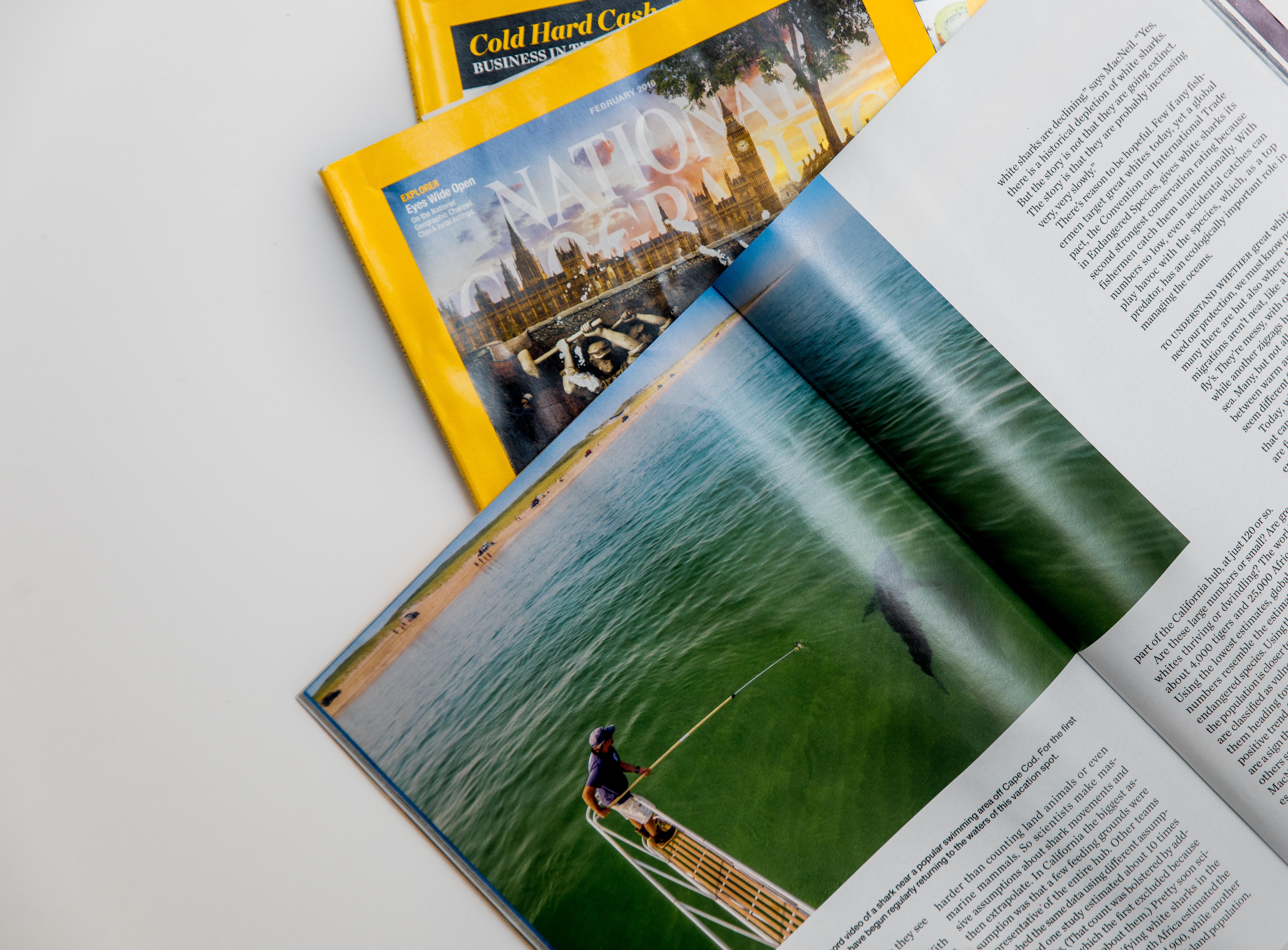 fishing magazine