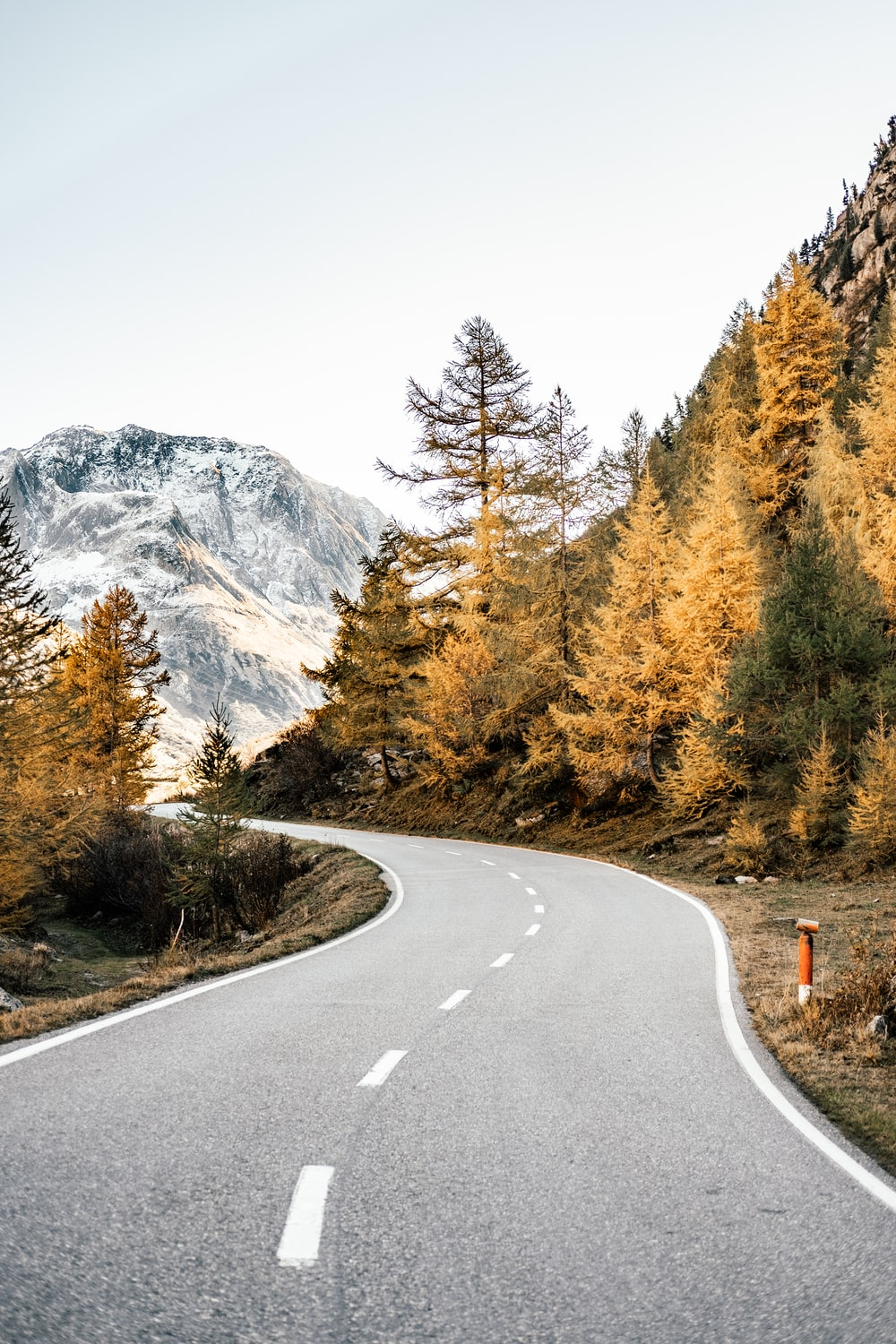 winding road near mountains and forest during daytime