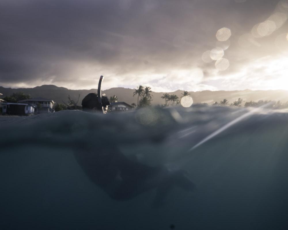 slit shot photography of man diving