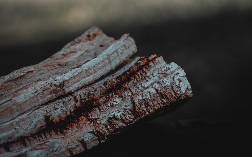 brown wood part closeup photography
