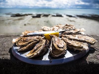 並べられた牡蛎と海の画像
