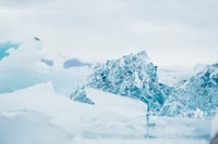 shallow focus photography of snow-covered rocks