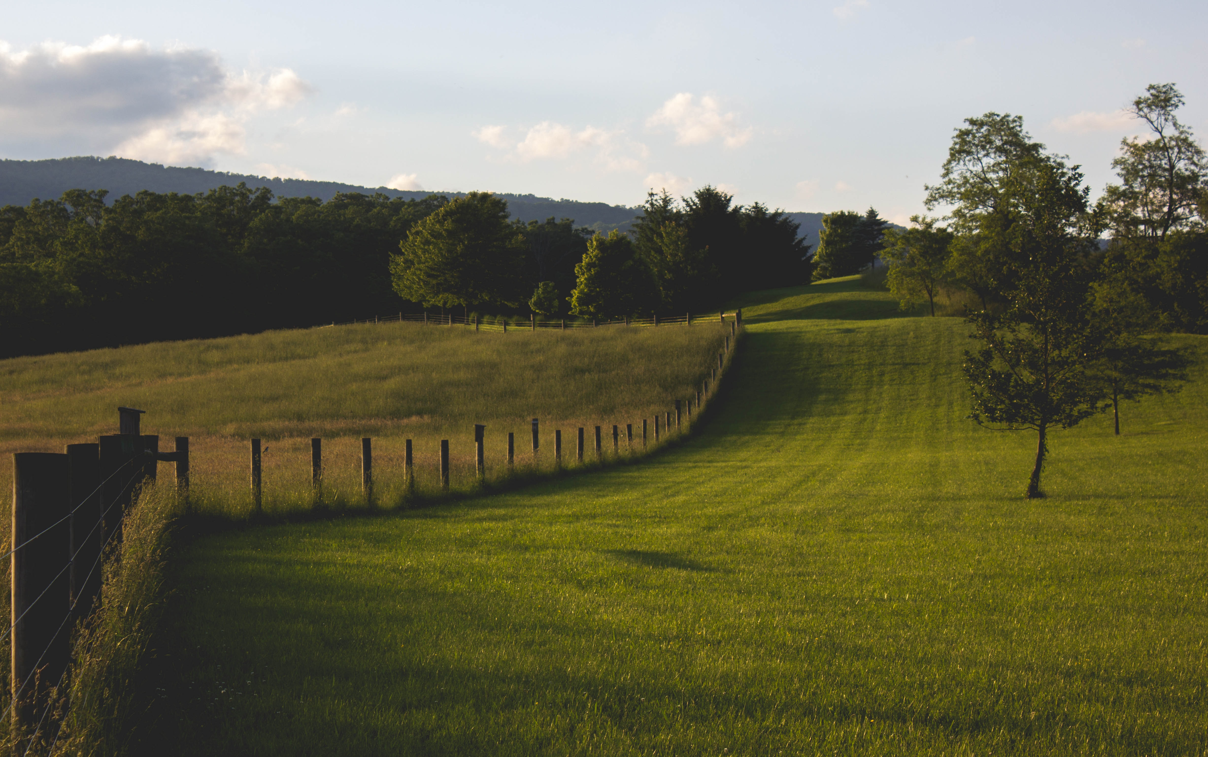 landscape photography of green field with fence